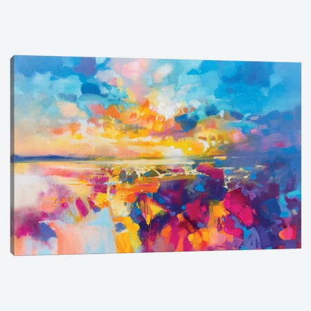 Acoustic Colour I Canvas Print #SNH124} by Scott Naismith Canvas Art