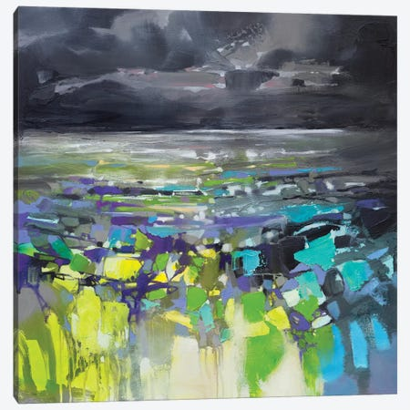 Dark Energy I Canvas Print #SNH127} by Scott Naismith Canvas Artwork