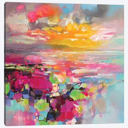 Energy Spectrum I Canvas Print #SNH128} by Scott Naismith Canvas Print