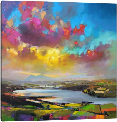 Struie Hill Dornoch by Scott Naismith Canvas Art Print