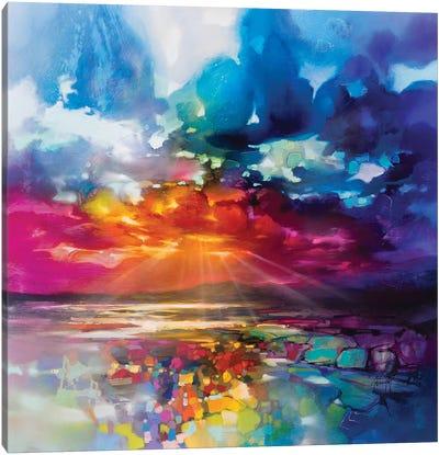 Sun's Energy Canvas Art Print