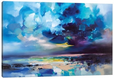 Harris Fractals by Scott Naismith Canvas Art Print