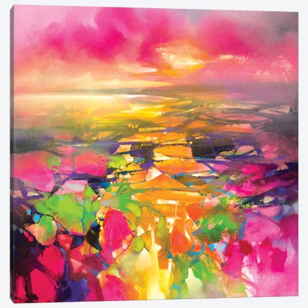 Fragments from Above 3-Piece Canvas #SNH155} by Scott Naismith Canvas Art Print
