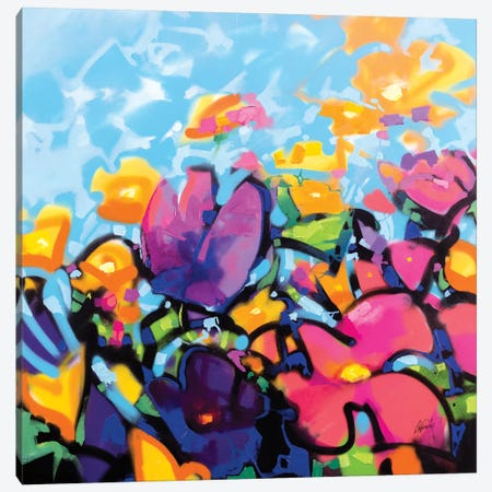 Scattered Colour I Canvas Print #SNH158} by Scott Naismith Canvas Wall Art