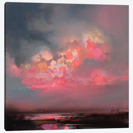 Cumulus Consonance Study I Canvas Print #SNH15} by Scott Naismith Canvas Wall Art