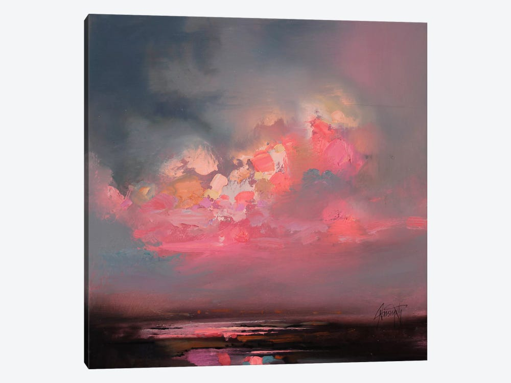Cumulus Consonance Study I by Scott Naismith 1-piece Canvas Art