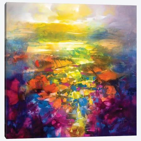 Fluid Resonance IV Canvas Print #SNH162} by Scott Naismith Canvas Print