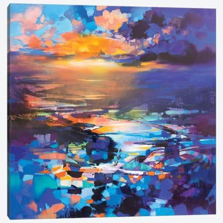 Hope Resonates Canvas Print #SNH165} by Scott Naismith Canvas Art