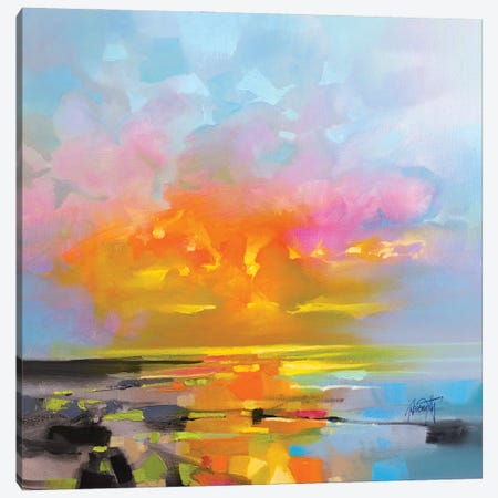Sunset Fragments Canvas Print #SNH169} by Scott Naismith Canvas Print