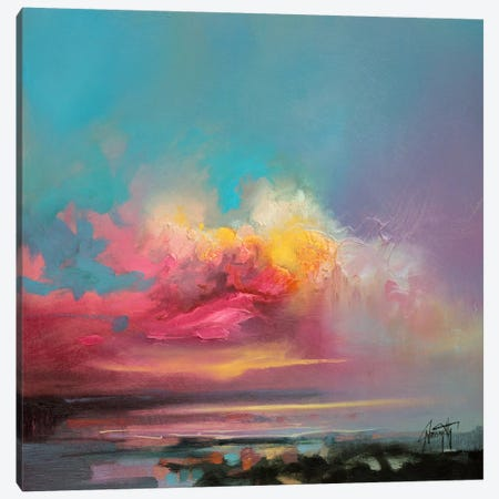 Cumulus Consonance Study II Canvas Print #SNH16} by Scott Naismith Canvas Art