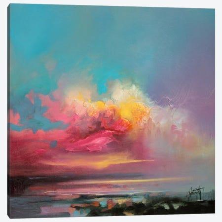 Cumulus Consonance Study II Canvas Print #SNH16} by Scott Naismith Canvas Art