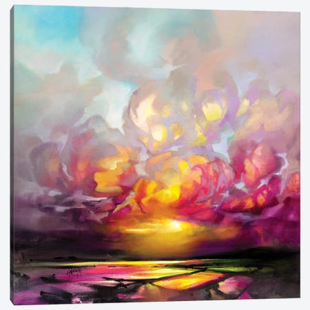 First Light on Loch Carron Canvas Print #SNH173} by Scott Naismith Canvas Artwork
