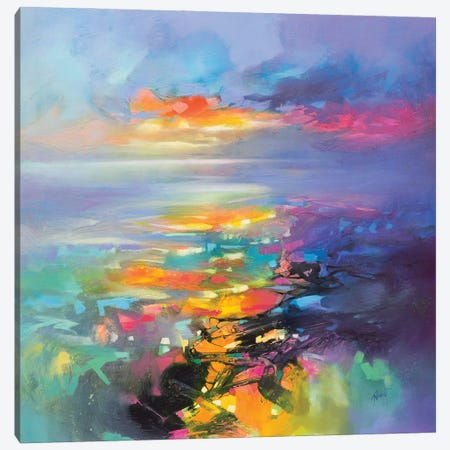 Euphoric Flight Canvas Print #SNH177} by Scott Naismith Canvas Print