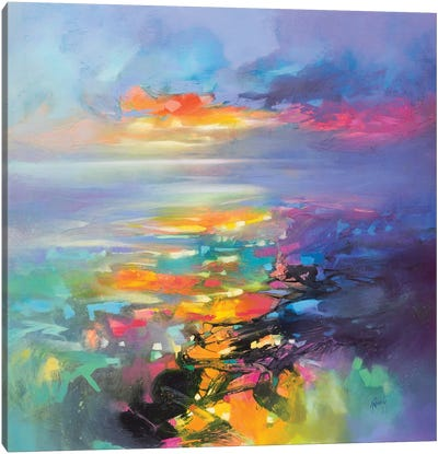 Euphoric Flight Canvas Art Print
