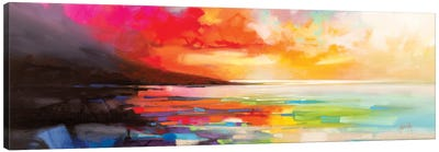 Chaotic Order Canvas Art Print