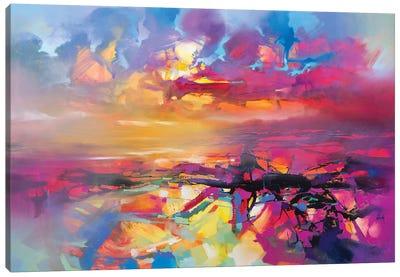 Electric Universe Canvas Art Print