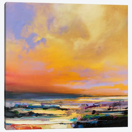 Diminuendo Sky Study I Canvas Print #SNH18} by Scott Naismith Art Print