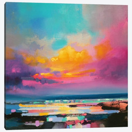 Diminuendo Sky Study II Canvas Print #SNH19} by Scott Naismith Canvas Art Print