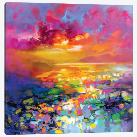 Colour Frequency I Canvas Print #SNH200} by Scott Naismith Canvas Art