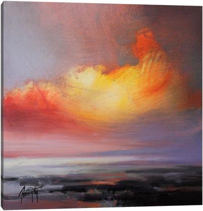 Translucent Light Study II Canvas Art Print