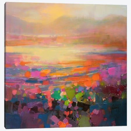 Diminuendo Shore Canvas Print #SNH34} by Scott Naismith Canvas Artwork