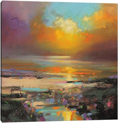 Golden Light Canvas Print #SNH35