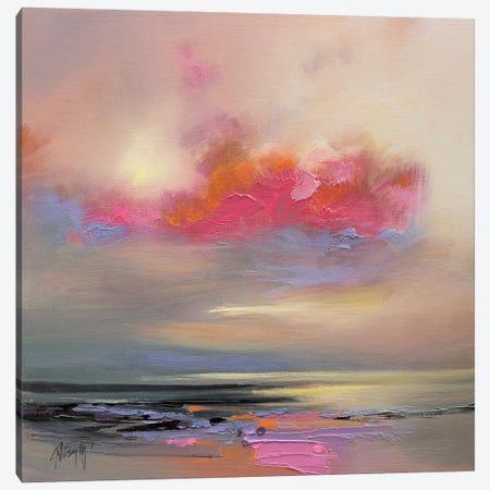 Magenta Cloud Canvas Print #SNH38} by Scott Naismith Canvas Print