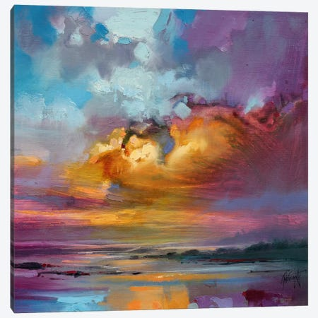 Consonant Sky Canvas Print #SNH3} by Scott Naismith Canvas Wall Art