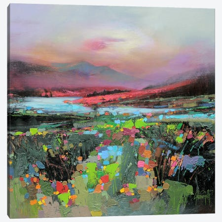 Highland Colour Canvas Print #SNH4} by Scott Naismith Canvas Print