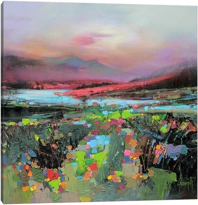 Highland Colour Canvas Art Print