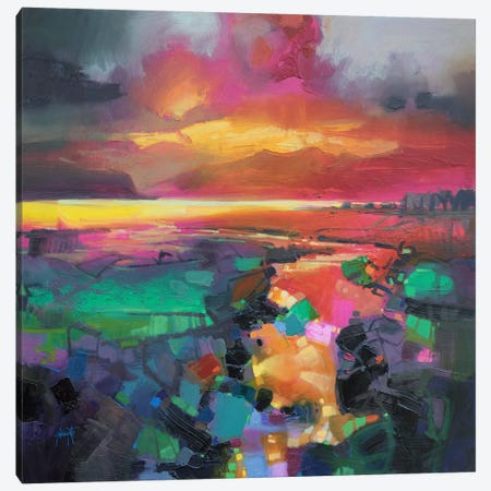 Magenta Rum Canvas Print #SNH60} by Scott Naismith Canvas Artwork