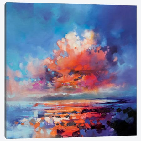 Cluster Cloud Canvas Print #SNH65} by Scott Naismith Canvas Print
