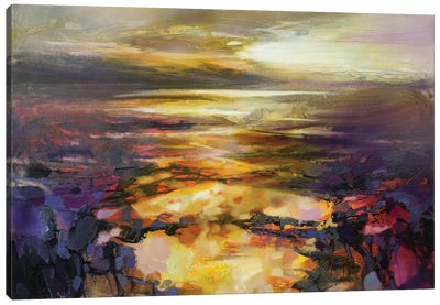 Path Of Reflections by Scott Naismith Canvas Art Print