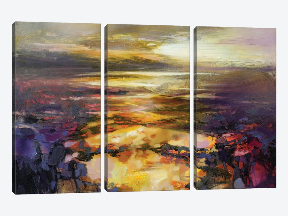 Path Of Reflections by Scott Naismith 3-piece Canvas Art Print