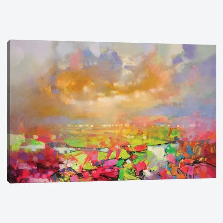 Solidify II Canvas Print #SNH77} by Scott Naismith Canvas Artwork