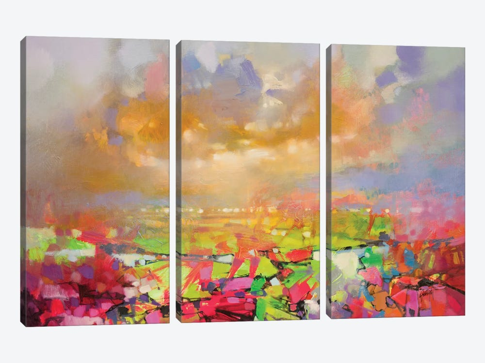 Solidify II by Scott Naismith 3-piece Canvas Artwork