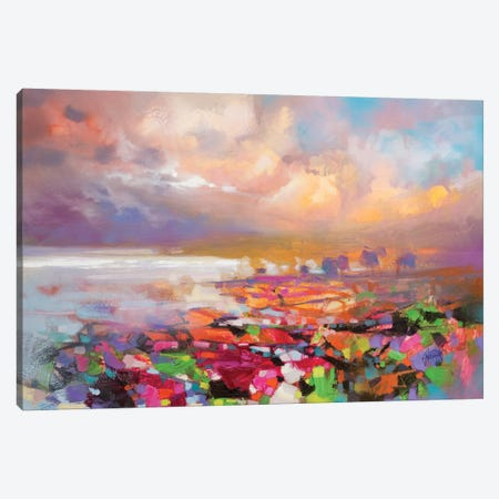 Solidify III Canvas Print #SNH78} by Scott Naismith Canvas Art Print