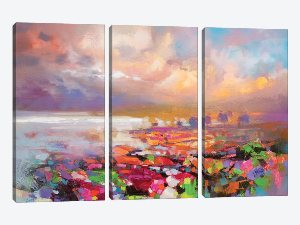 Solidify III 3-piece Canvas Art Print