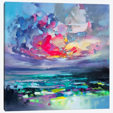 Elements I Canvas Print #SNH86} by Scott Naismith Canvas Print