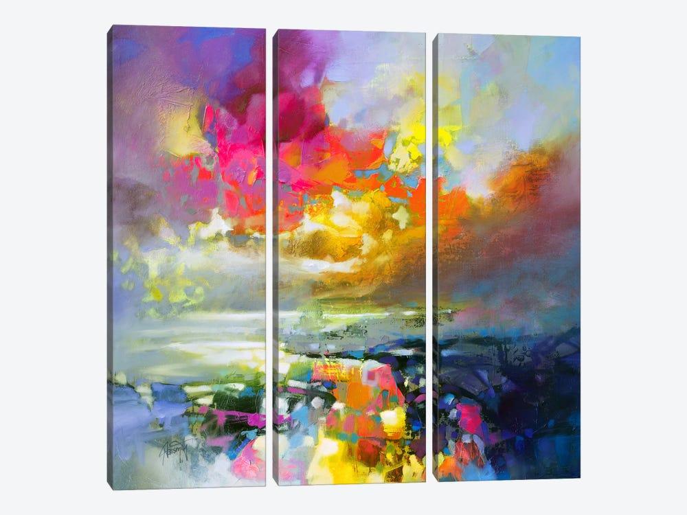 Elements II by Scott Naismith 3-piece Canvas Art Print