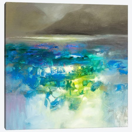 Fluid Dynamics I Canvas Print #SNH89} by Scott Naismith Canvas Art