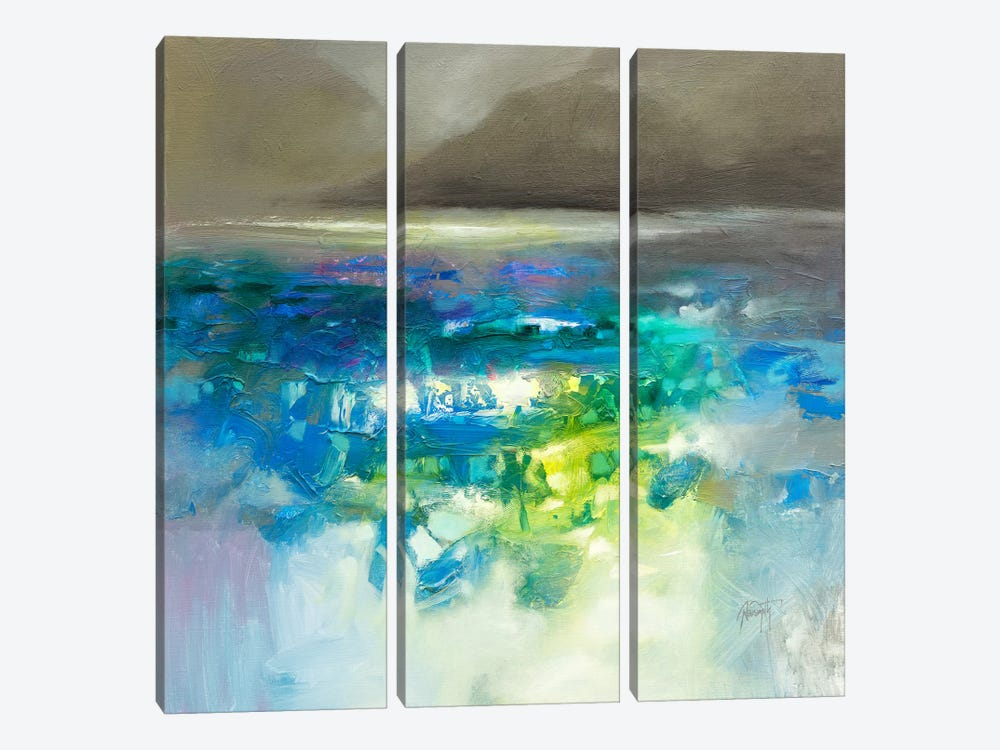 Fluid Dynamics I by Scott Naismith 3-piece Canvas Art Print