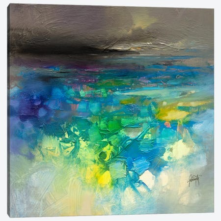 Fluid Dynamics II Canvas Print #SNH90} by Scott Naismith Canvas Art Print