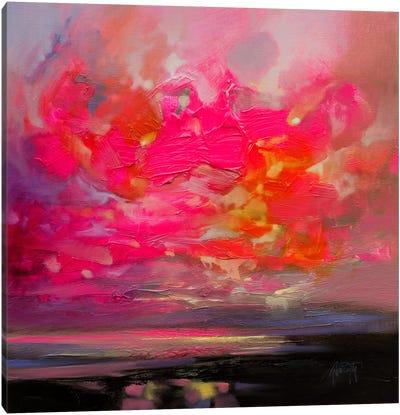 Magenta Plasma Canvas Print #SNH93