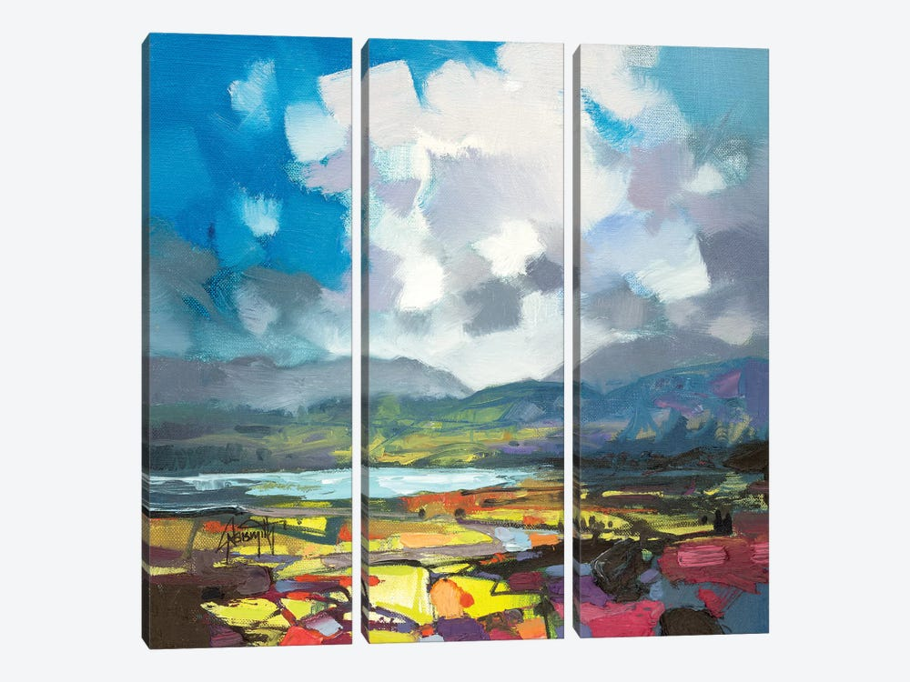 April Colour Study by Scott Naismith 3-piece Canvas Art Print