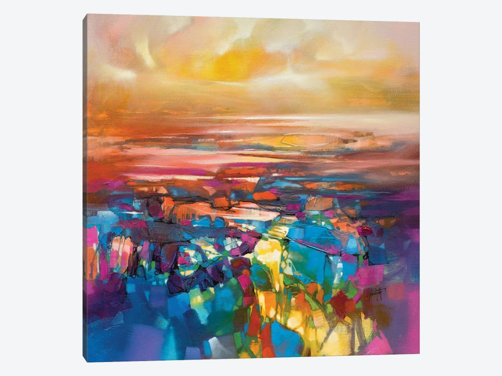 Chromodynamics I by Scott Naismith 1-piece Canvas Artwork