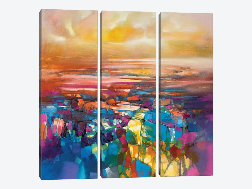 Chromodynamics I by Scott Naismith 3-piece Canvas Artwork