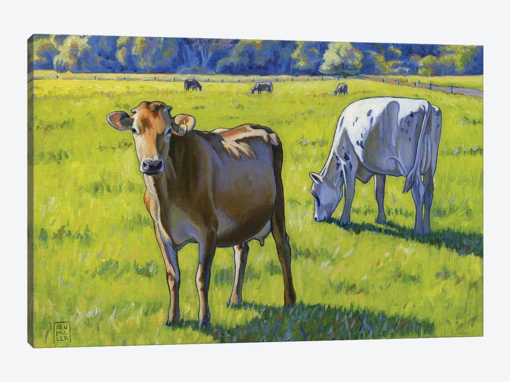 Jersey Girl by Stacey Neumiller 1-piece Canvas Art