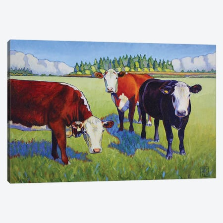 Bovine Buddies Canvas Print #SNM11} by Stacey Neumiller Canvas Art