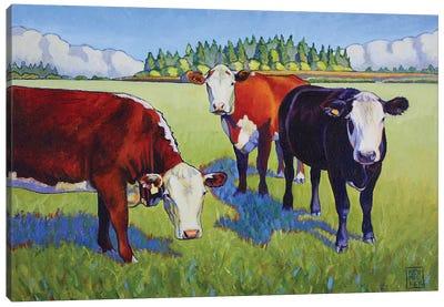 Bovine Buddies Canvas Art Print